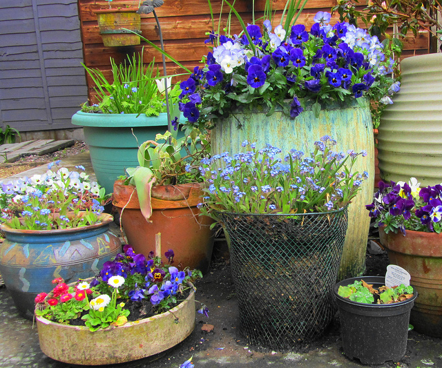 Recycled garden containers