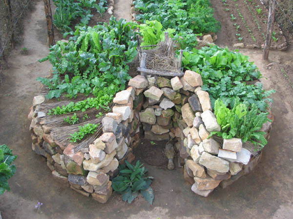 In Praise of the African Keyhole Garden - FABULOUS FAMILIES