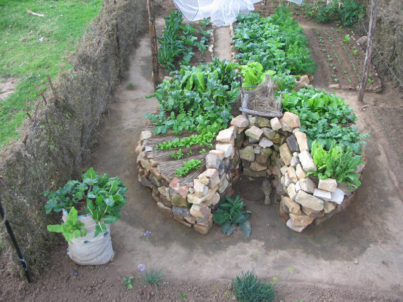 In Praise of the African Keyhole Garden FABULOUS FAMILIES